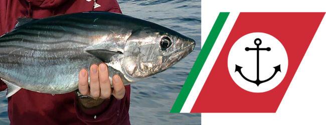Siracusa | Disposta l'interruzione immediata della pesca sportiva e ricreativa del tonno rosso