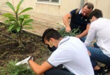 Siracusa | Gli studenti del Nautico impegnati a rendere piu' verde la loro scuola