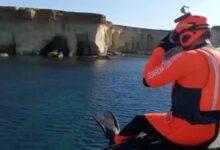 Siracusa   I Rescue Swimmer della Guardia costiera salvano un cane caduto in mare
