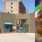 Augusta | Fiutata dai cani Tony e Kira la droga che familiari di detenuti tentavano di introdurre in carcere